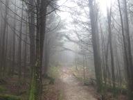 black mountain crest trail mitchell NC